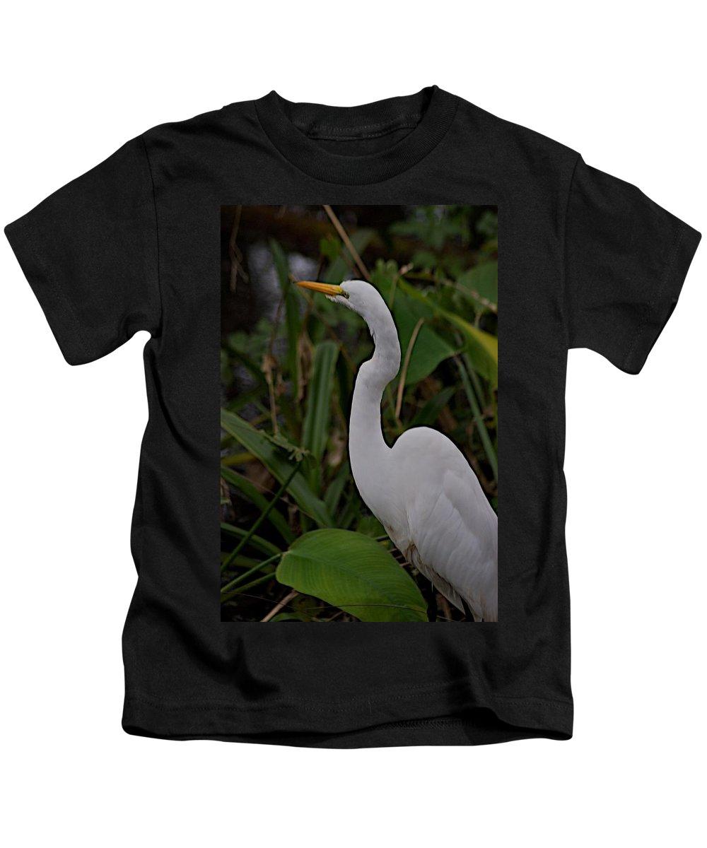 Audobon Corkscrew Swamp Sanctuary Kids T-Shirt featuring the photograph Corkscrew by Joseph Yarbrough