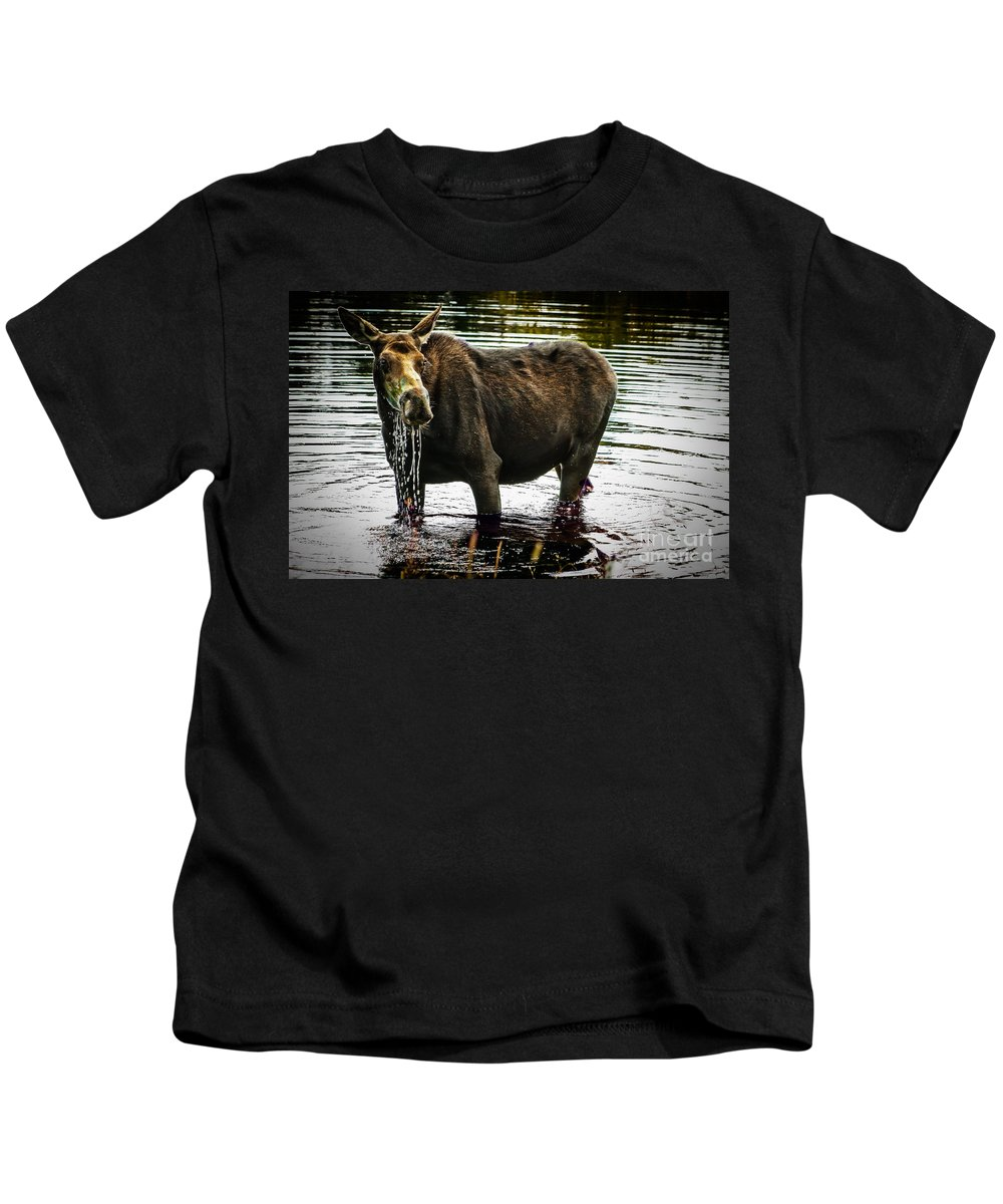 Moose Kids T-Shirt featuring the photograph Cow Moose by Robert Bales