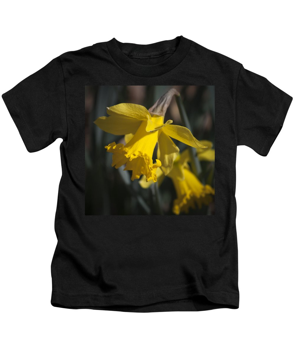 Daffodil Kids T-Shirt featuring the photograph Daffodil Squared by Teresa Mucha