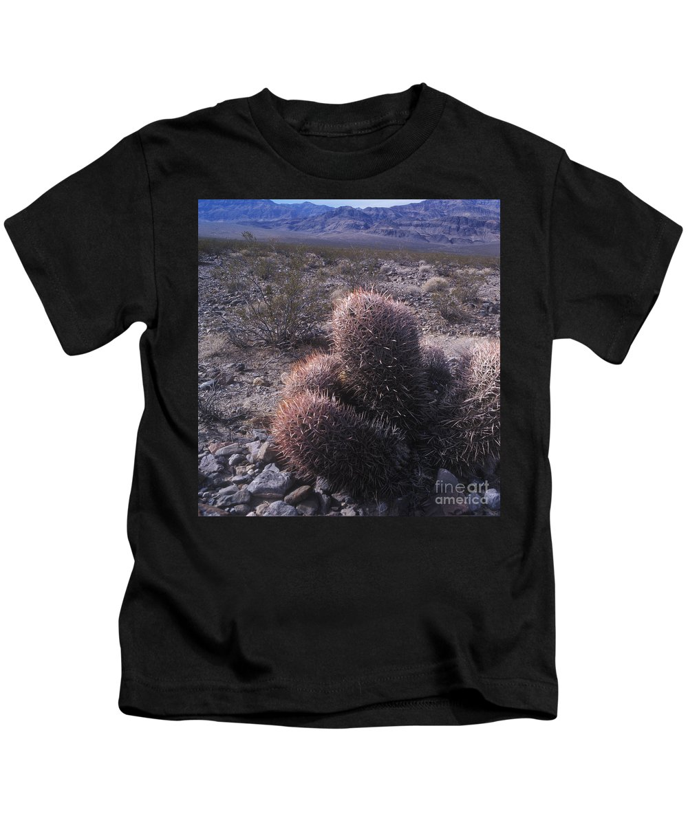 Death Valley Kids T-Shirt featuring the photograph Death Valley Cactus by Jim And Emily Bush