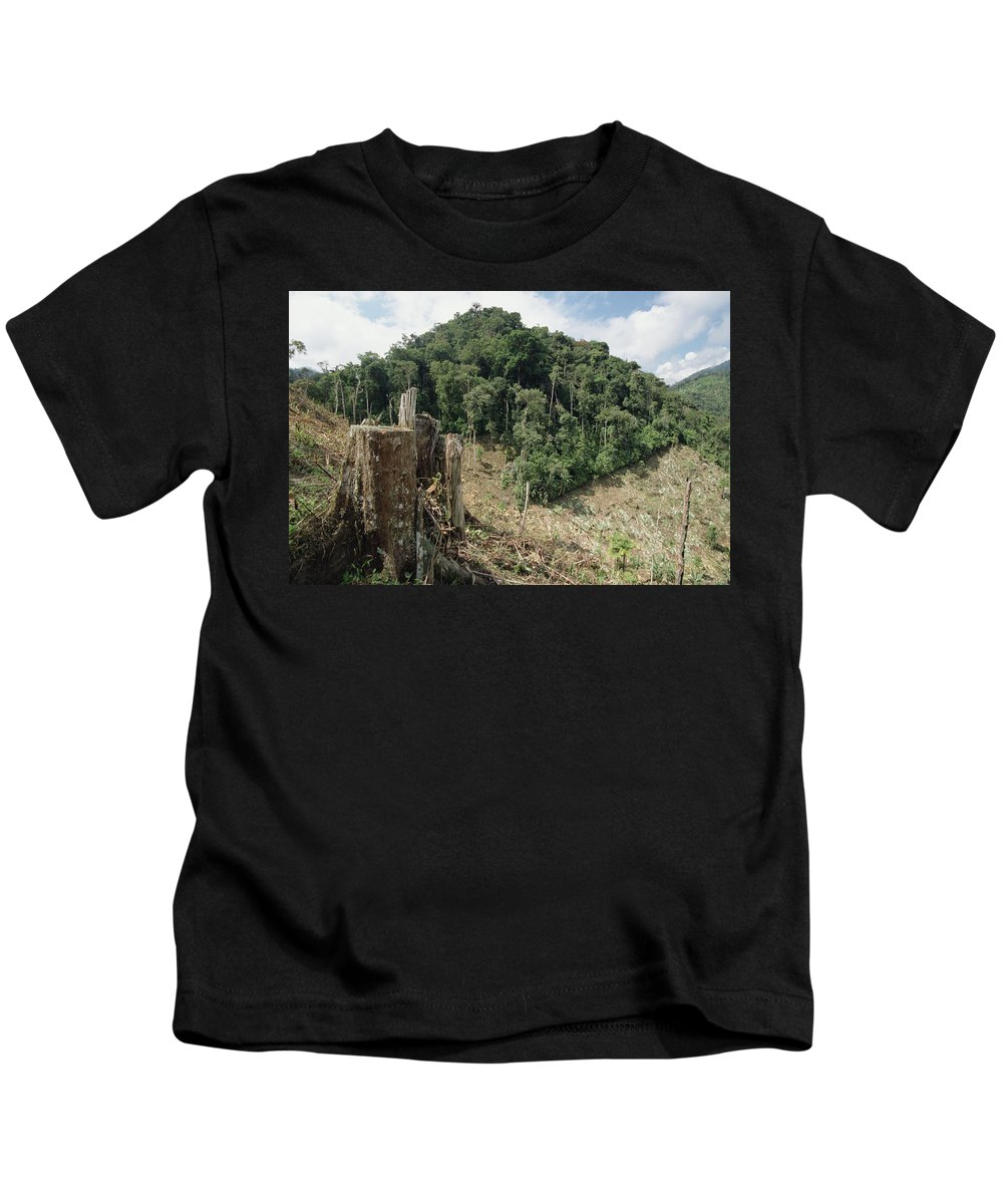 Mp Kids T-Shirt featuring the photograph Deforested Hillside Of Wet Montane by Gerry Ellis