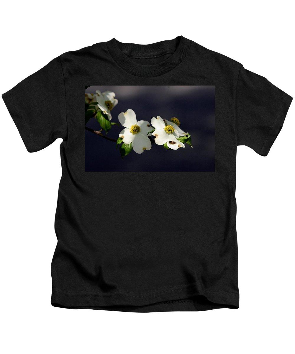 Dogwood Kids T-Shirt featuring the photograph Dogwood Blossom - Beelightful by Travis Truelove