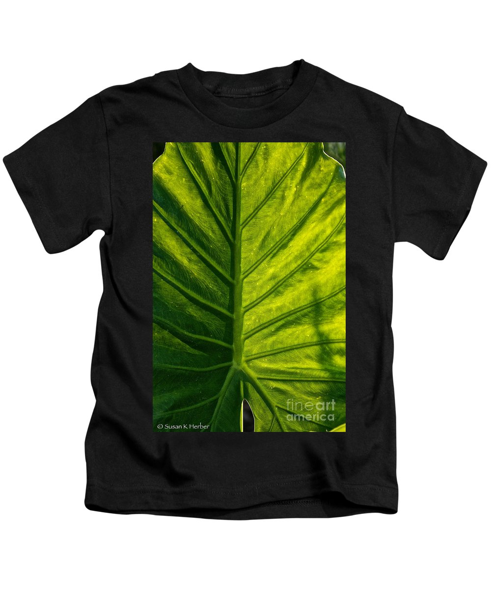 Outdoors Kids T-Shirt featuring the photograph Elephant Ear by Susan Herber