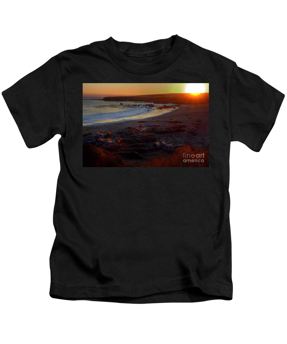 San Simeon Kids T-Shirt featuring the photograph Elephant Rocks by James Anderson