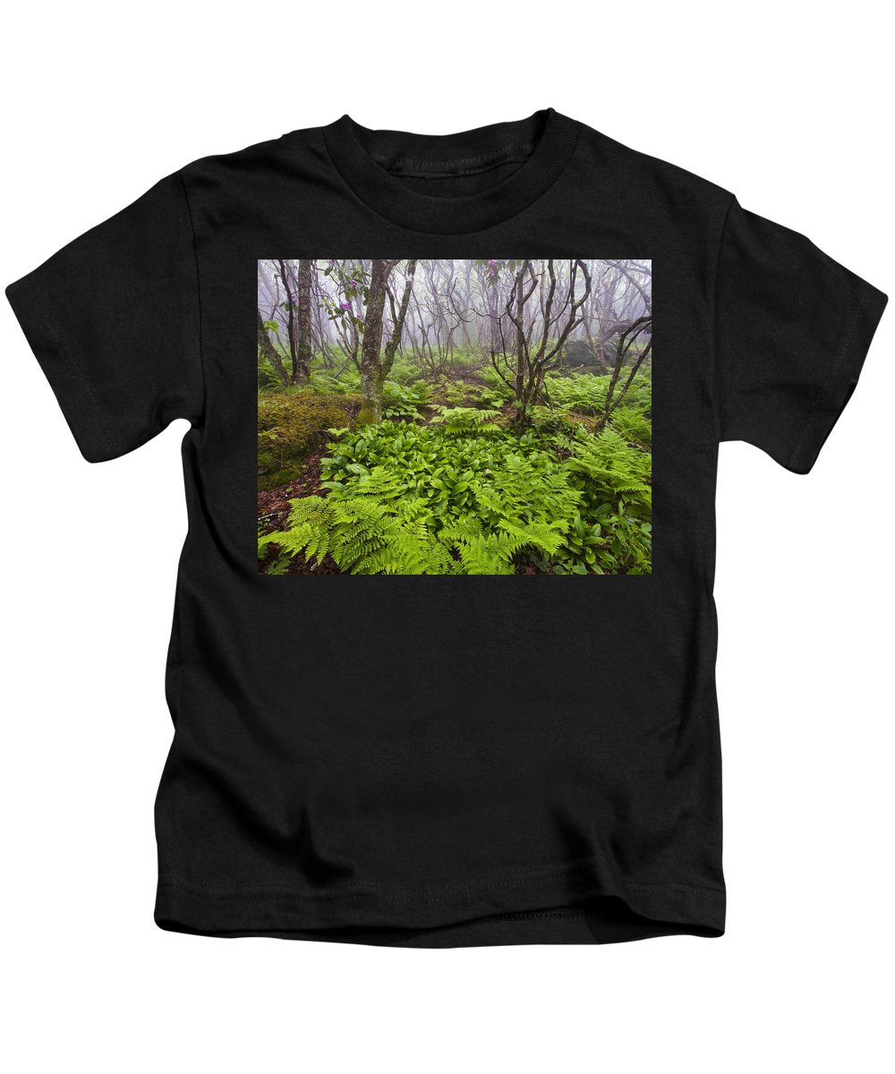 North Carolina Kids T-Shirt featuring the photograph Enchanted Woodland Forest In Fog Blue Ridge Parkway In North Carolina by Bill Swindaman