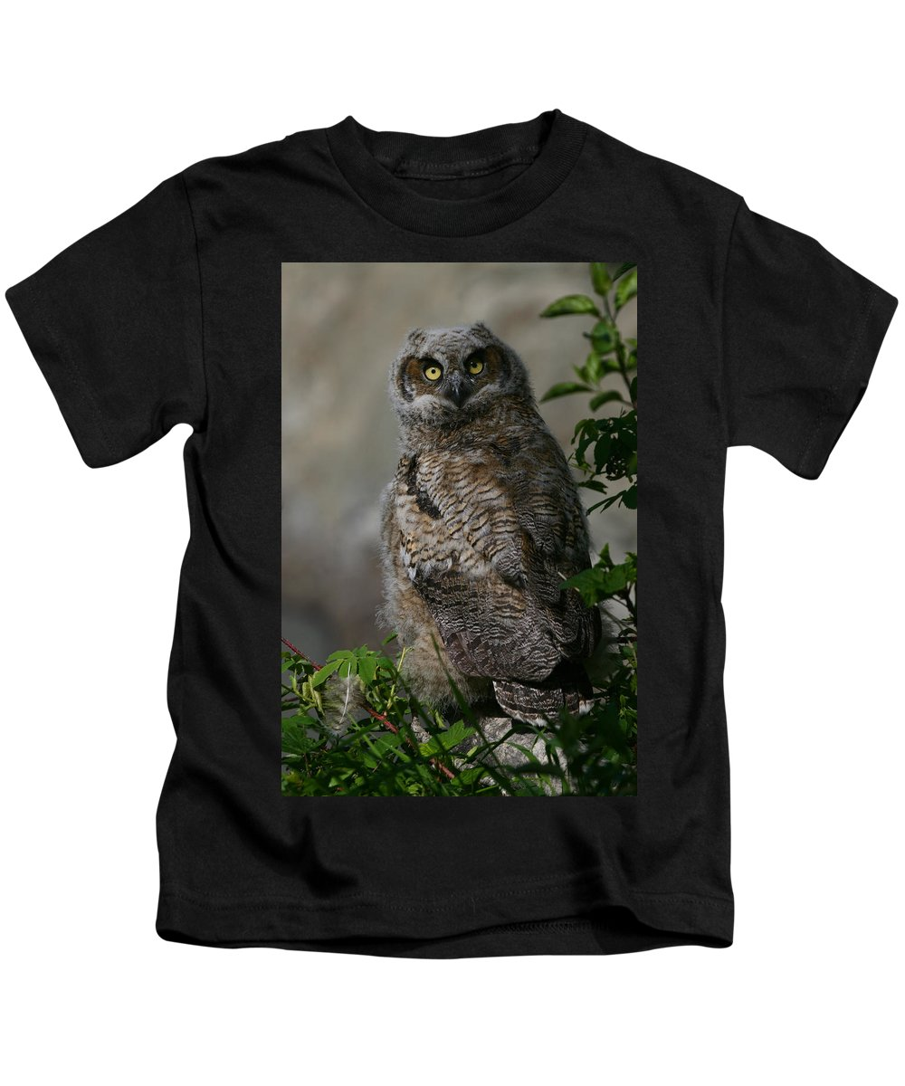 Alaska Kids T-Shirt featuring the photograph Eyes On You by Doug Lloyd