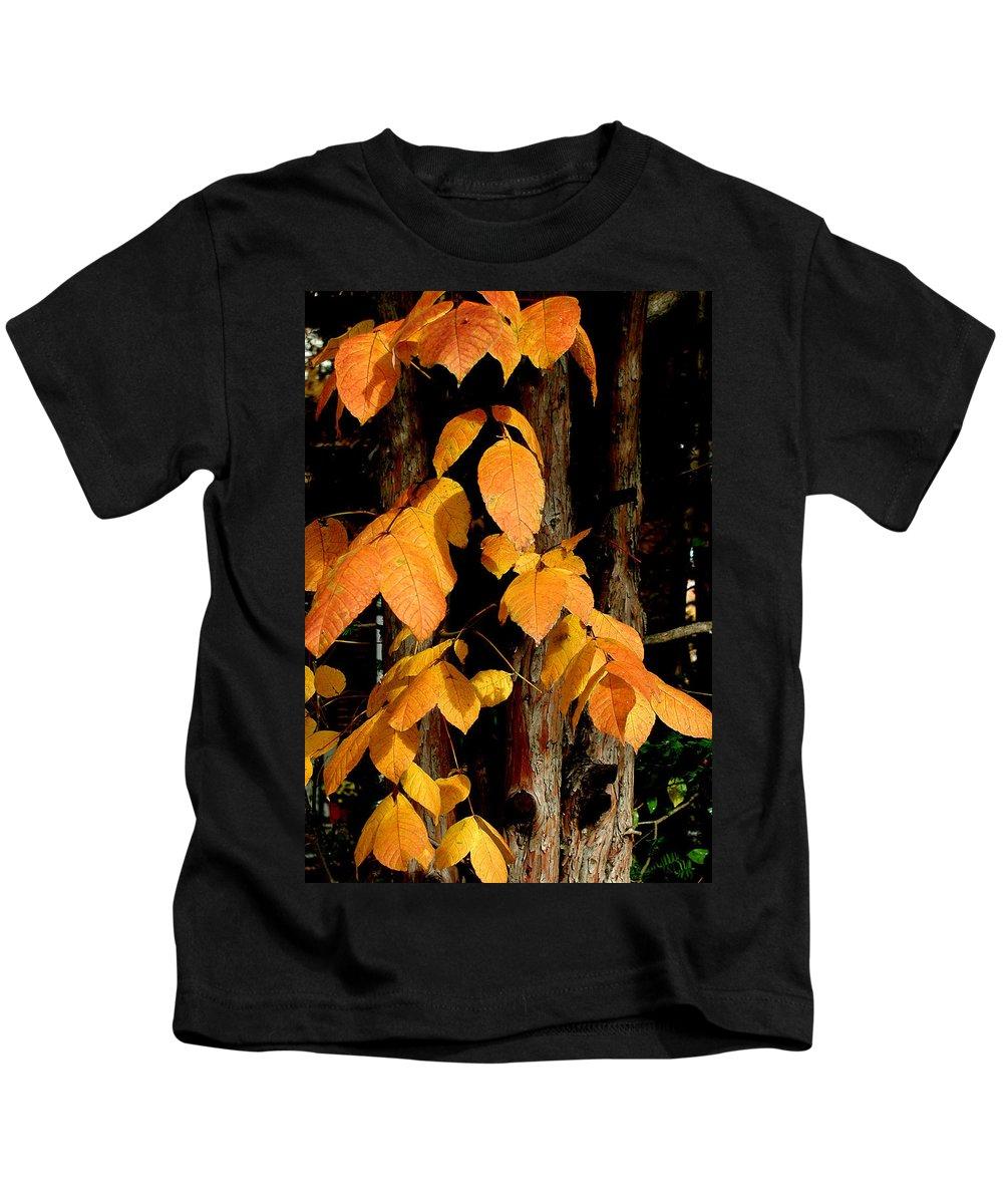 Fall Leaves Kids T-Shirt featuring the photograph Fall Leaves by Denise Keegan Frawley