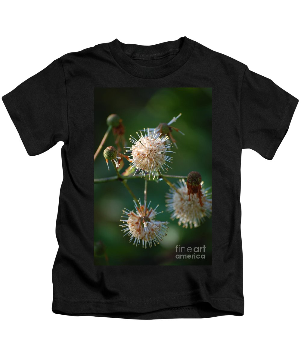 Buttonbush Kids T-Shirt featuring the photograph Fallen Flowers by Robert Meanor