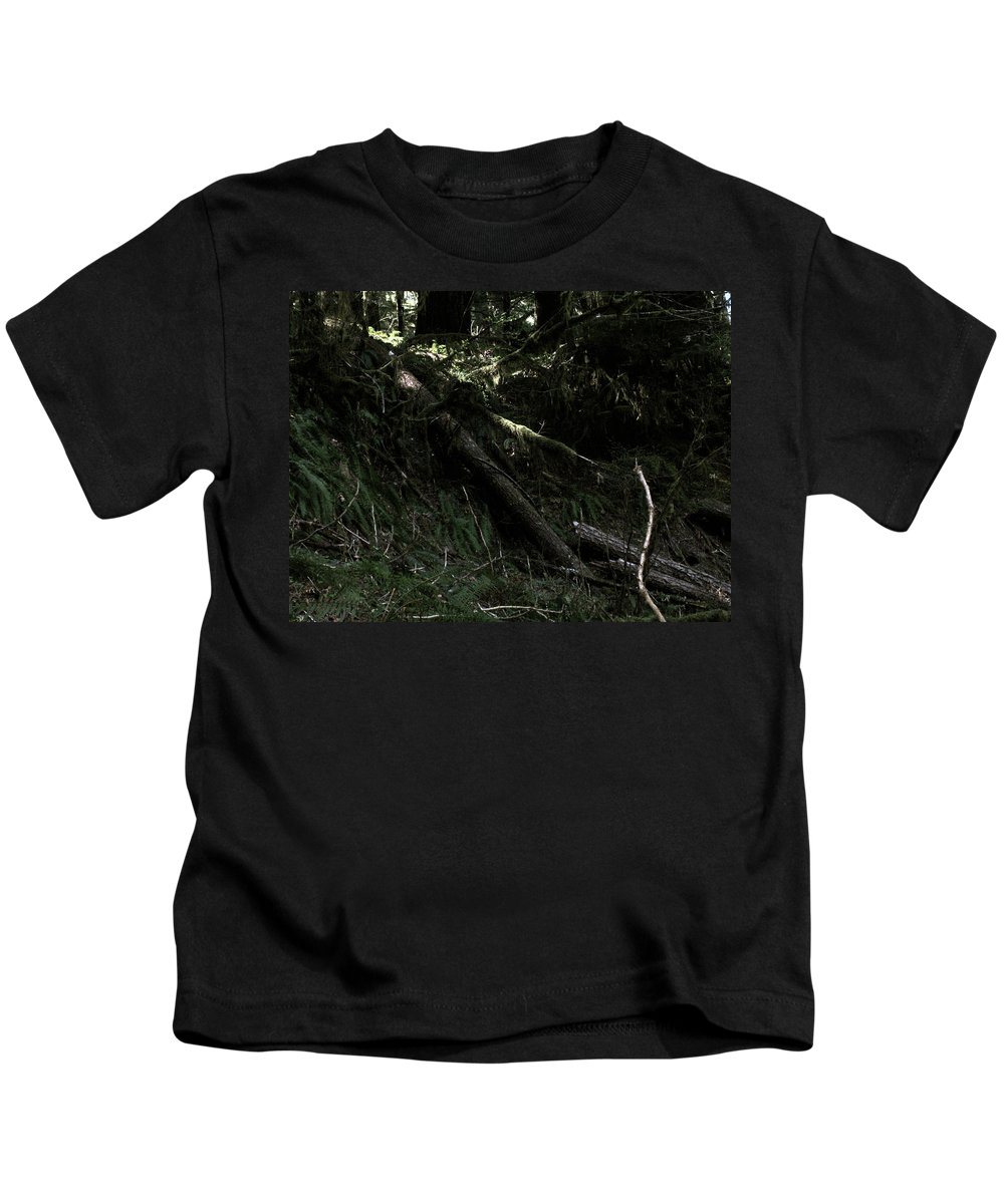 Trees Kids T-Shirt featuring the photograph Fallen by Linda Hutchins
