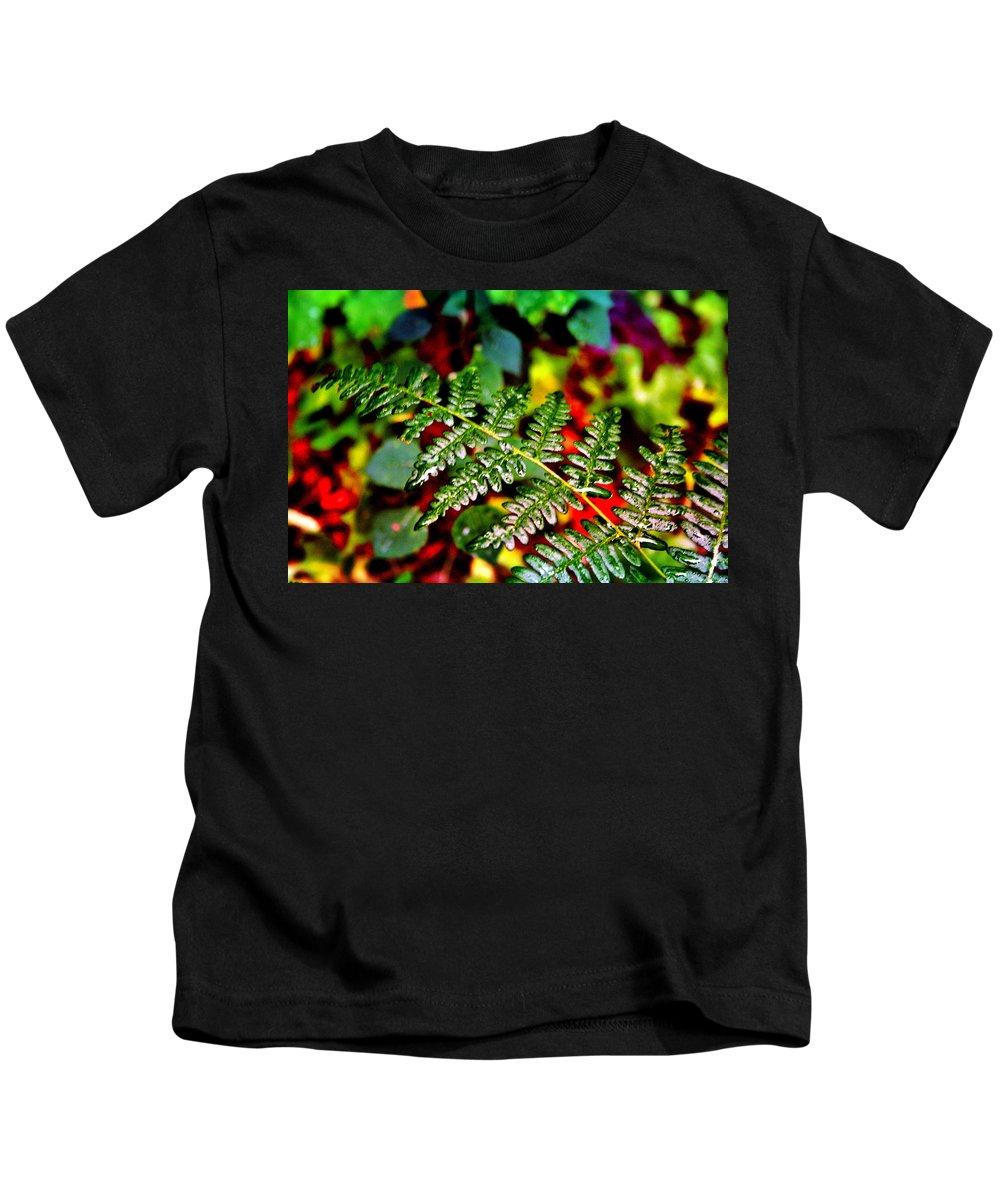 Fern Kids T-Shirt featuring the photograph Fern I by Ellen Heaverlo