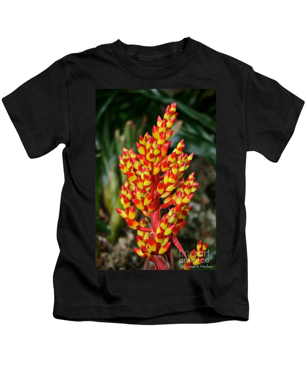 Tropical Plant Kids T-Shirt featuring the photograph Firecracker by Susan Herber