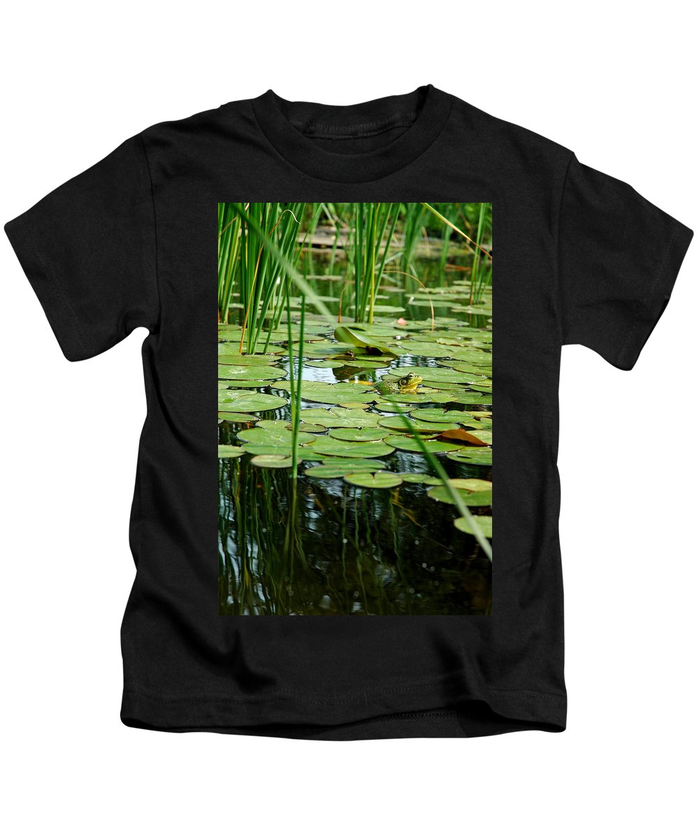 Usa Kids T-Shirt featuring the photograph Fly Beware by LeeAnn McLaneGoetz McLaneGoetzStudioLLCcom