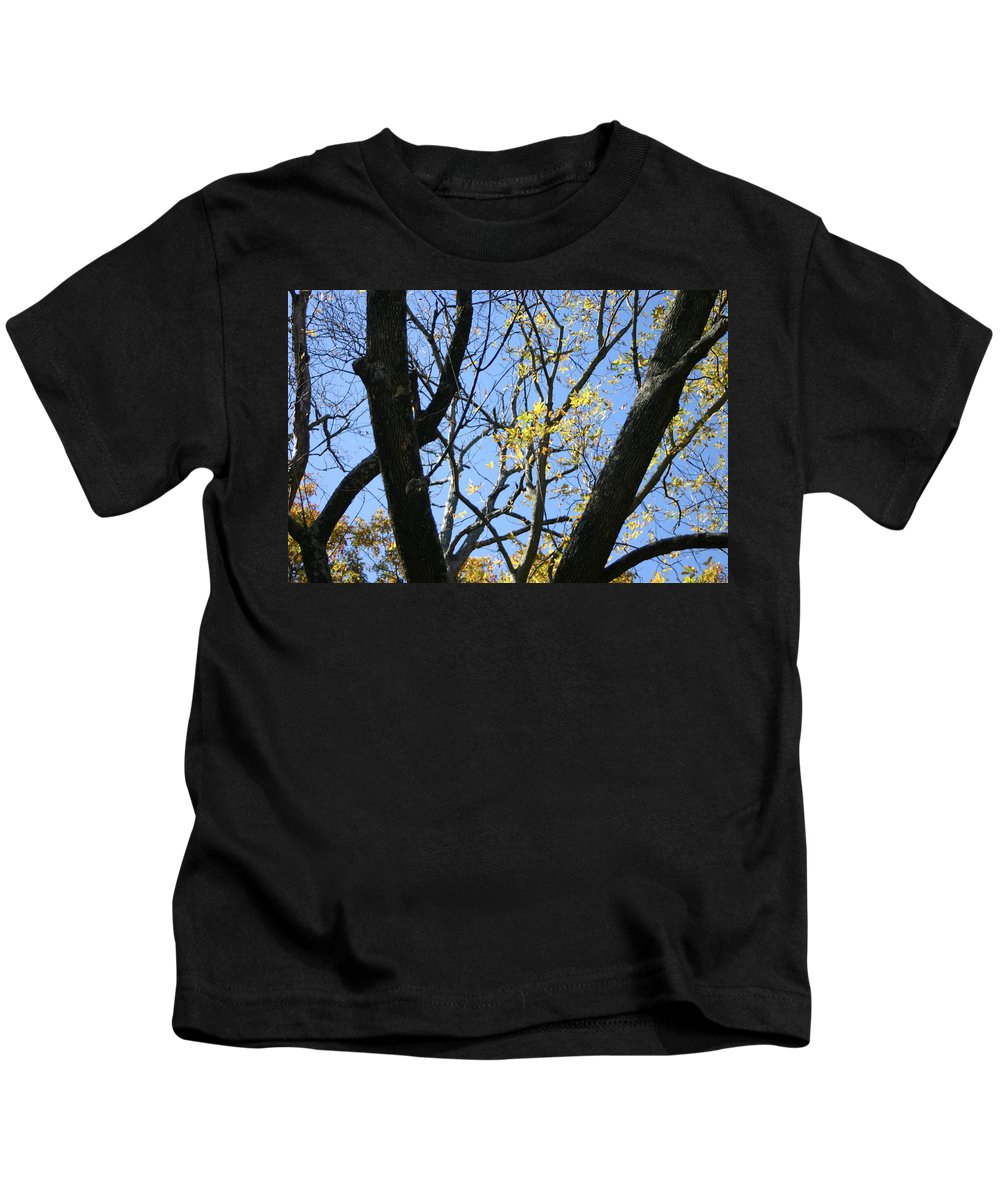 Blue Sky Kids T-Shirt featuring the photograph For The Trees by Leann DeBord