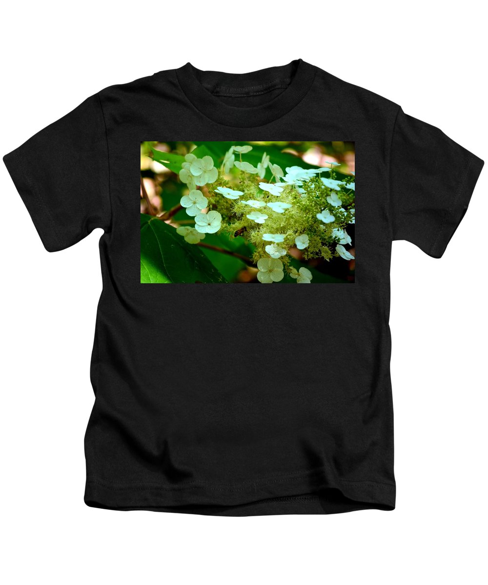 Bee Kids T-Shirt featuring the photograph Going In For The Sweet Stuff by Maria Urso