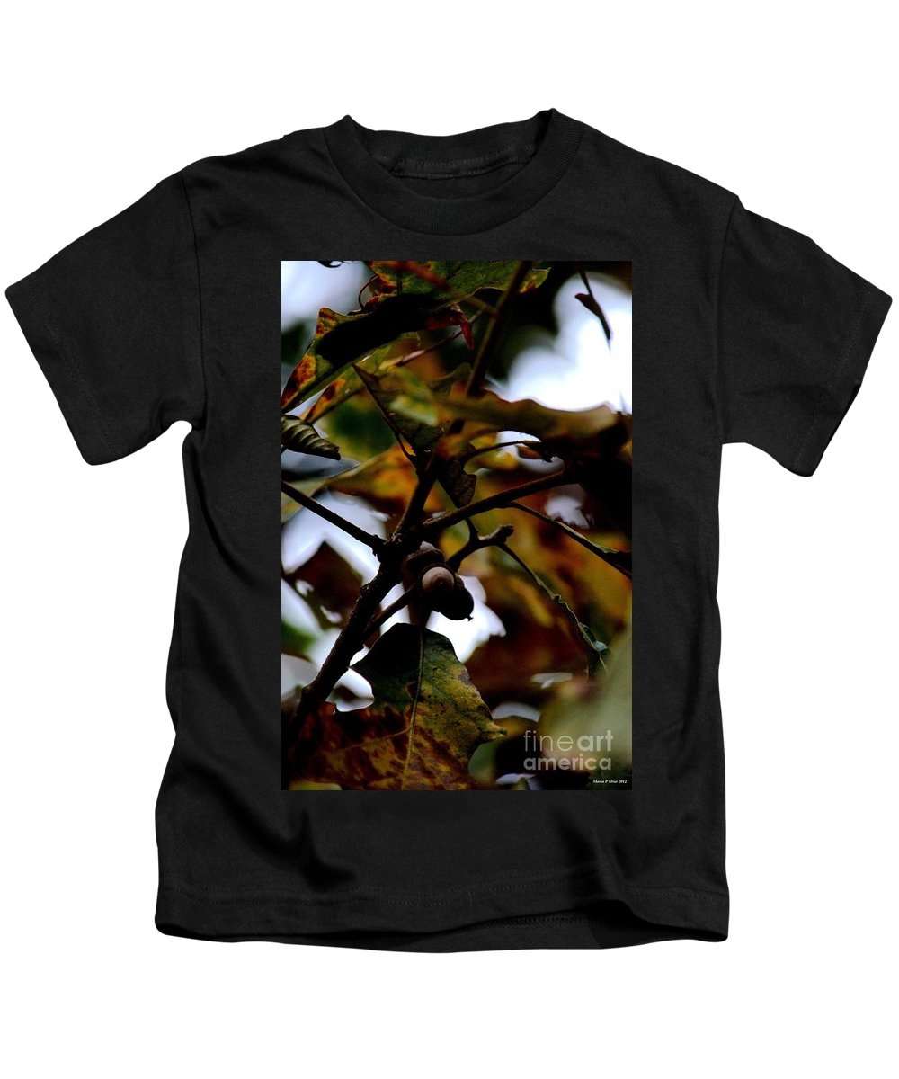 Golden Oak At Nightfall Kids T-Shirt featuring the photograph Golden Oak At Nightfall by Maria Urso