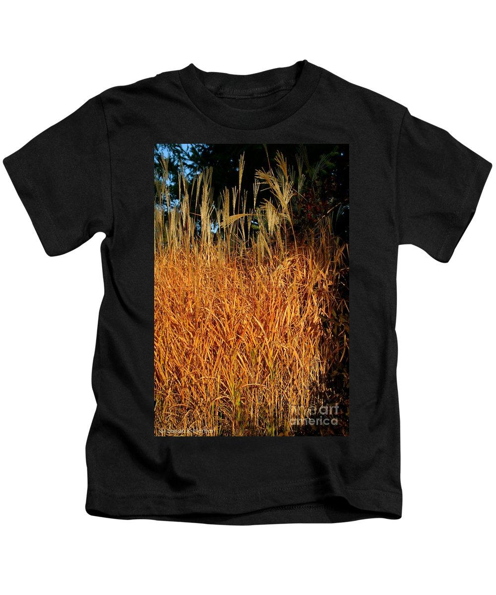 Outdoors Kids T-Shirt featuring the photograph Golden Silver Grass by Susan Herber
