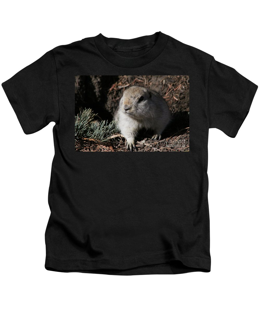 Gopher Kids T-Shirt featuring the photograph Gopher by Alyce Taylor