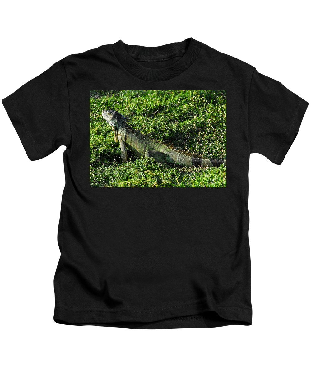 Fine Art Photography Kids T-Shirt featuring the photograph Green Iguana by David Lee Thompson