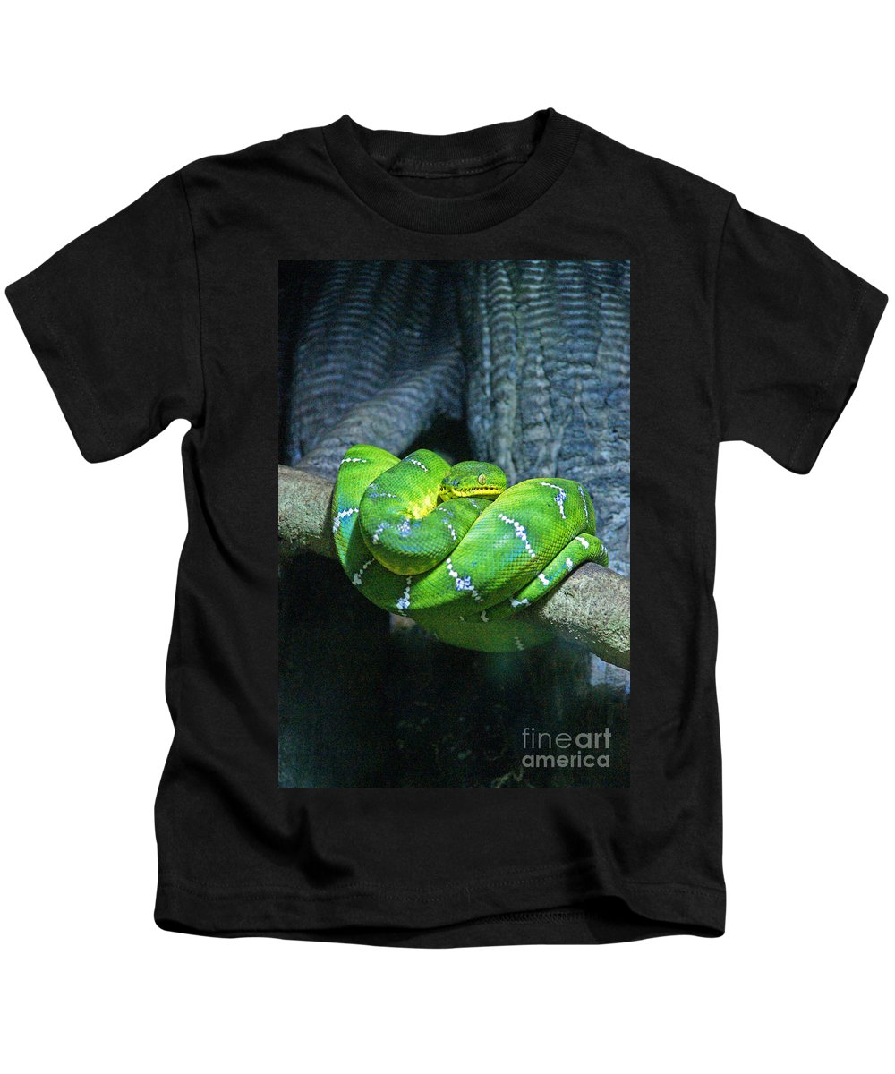 Snakes Kids T-Shirt featuring the photograph Green Snake by Randy Harris