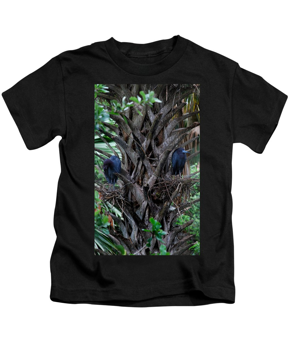 Guardians Kids T-Shirt featuring the photograph Guardians by Skip Willits