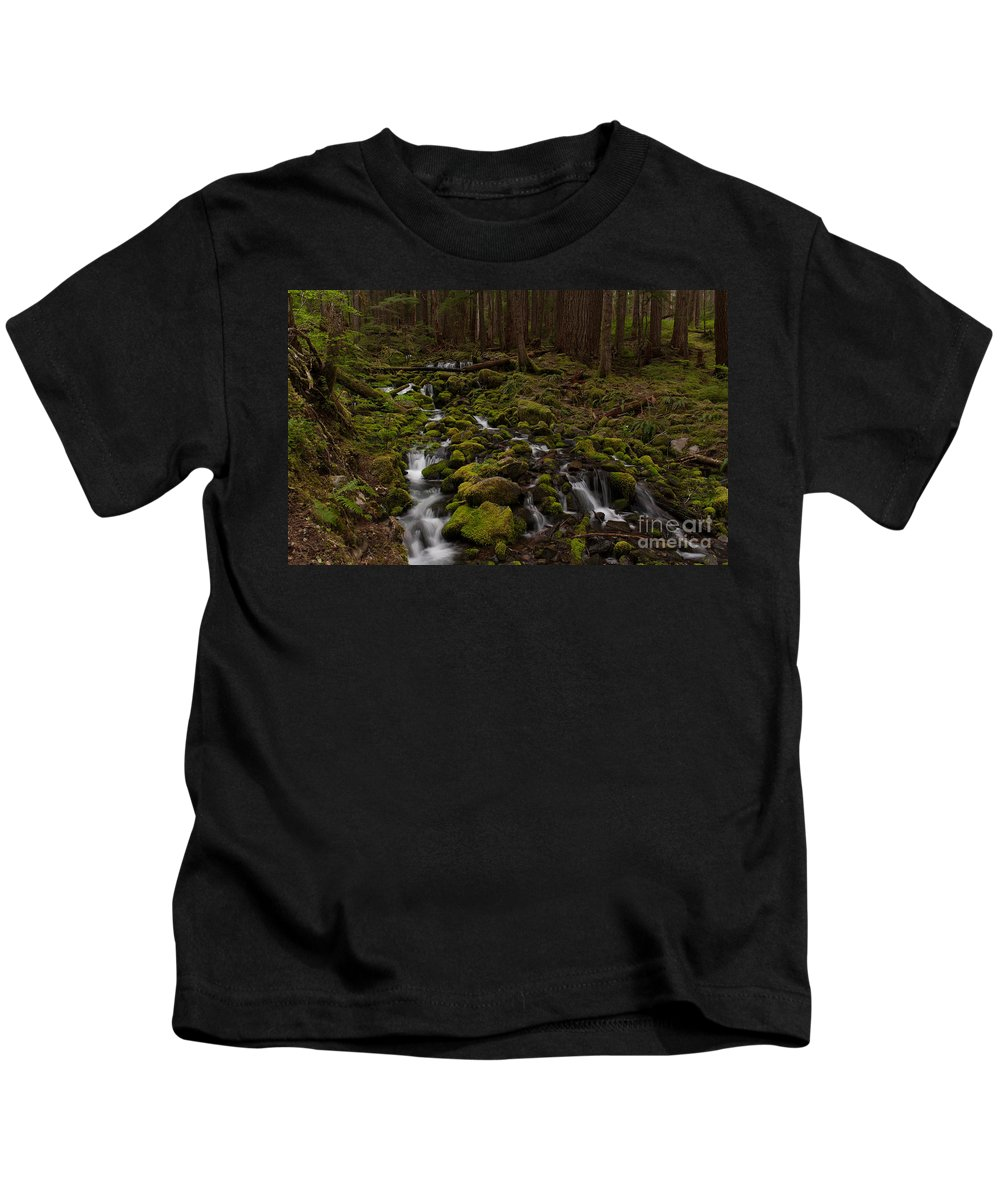 Olympic National Park Kids T-Shirt featuring the photograph Hall Of The Mosses by Mike Reid