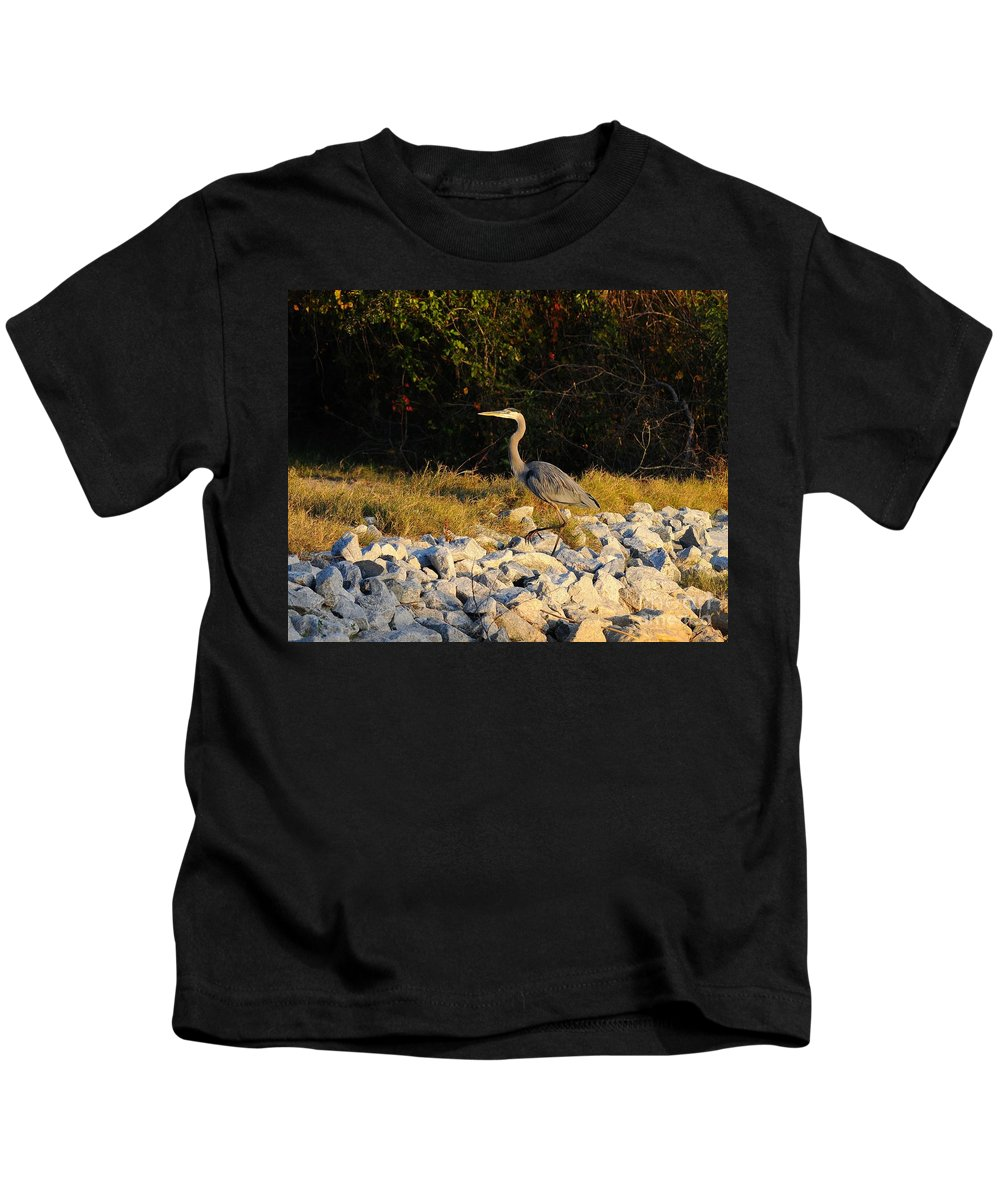 Great Blue Heron Kids T-Shirt featuring the photograph Hard Rock Heron by Al Powell Photography USA