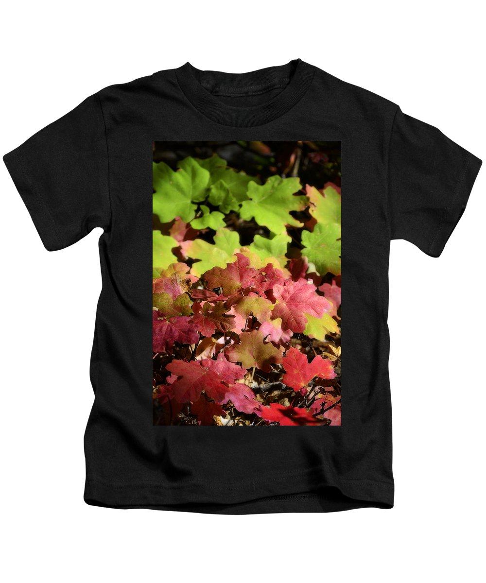 Fall Colors Kids T-Shirt featuring the photograph Harmony by Saija Lehtonen