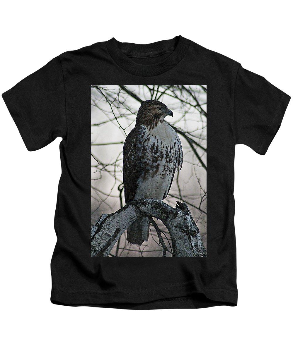 Hawk Kids T-Shirt featuring the photograph Hawk 7 by Joe Faherty
