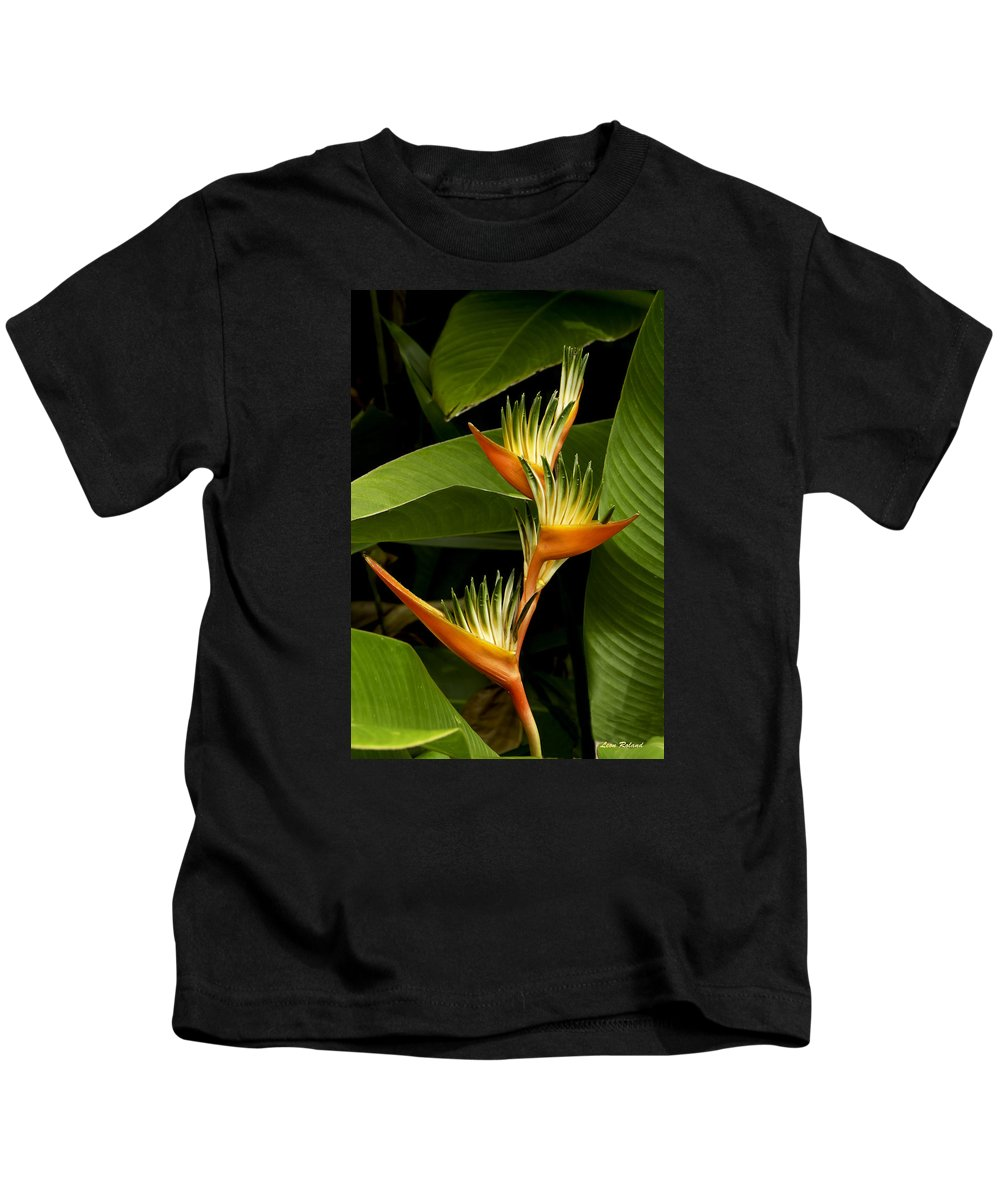 Flowers Kids T-Shirt featuring the photograph Heliconia by Leon Roland
