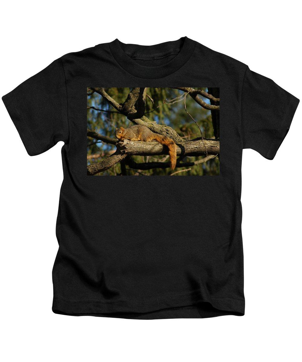 Animal Kids T-Shirt featuring the photograph I See You by LeeAnn McLaneGoetz McLaneGoetzStudioLLCcom