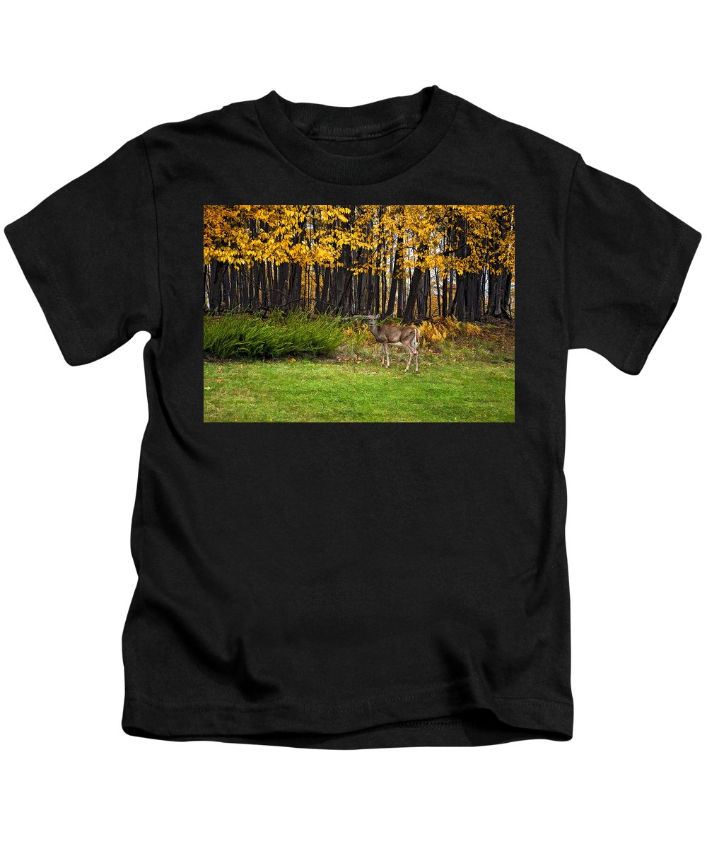 West Virginia Kids T-Shirt featuring the photograph In A Yellow Wood Painted by Steve Harrington