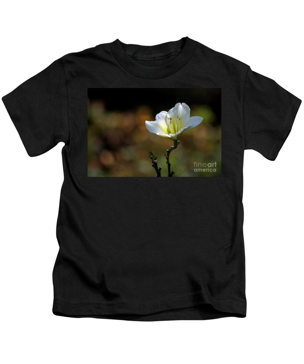 Flowers Kids T-Shirt featuring the photograph In The Spot Light by Living Color Photography Lorraine Lynch