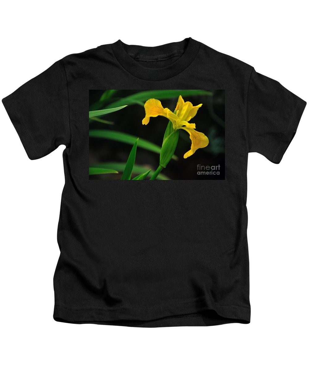 Photography Kids T-Shirt featuring the photograph Iris In Yellow by Kaye Menner