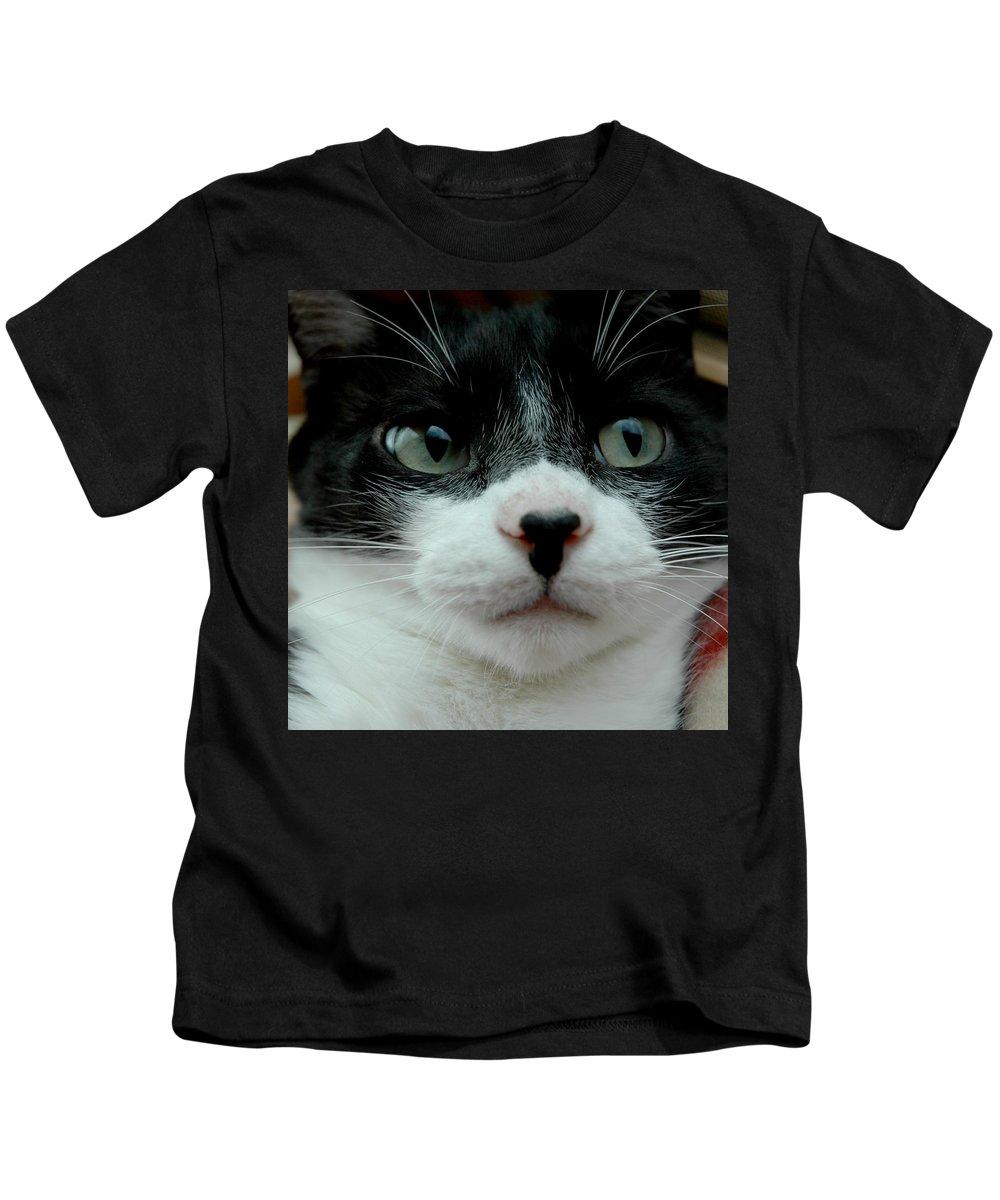 Usa Kids T-Shirt featuring the photograph Kitty Closeup by LeeAnn McLaneGoetz McLaneGoetzStudioLLCcom