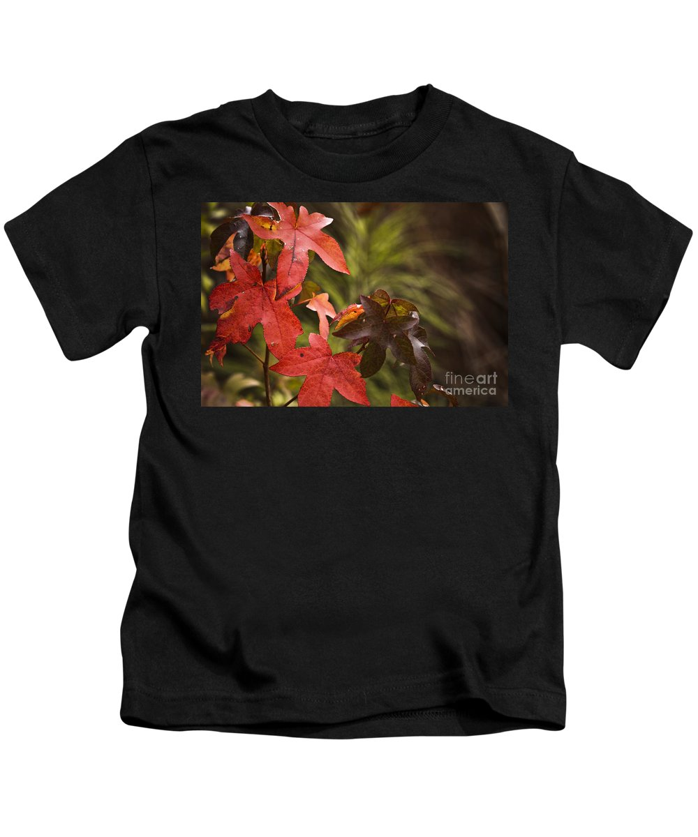 Orange Leaves Kids T-Shirt featuring the photograph Leafy by Kim Henderson