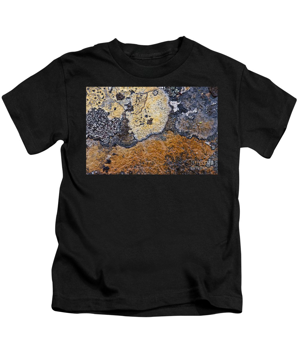 Lichen Kids T-Shirt featuring the photograph Lichen Pattern Series - 19 by Heiko Koehrer-Wagner