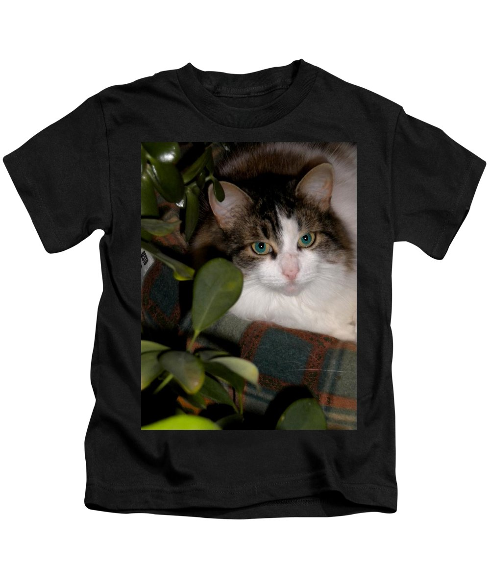 Cat Kids T-Shirt featuring the photograph Lila's Nest by Renate Nadi Wesley