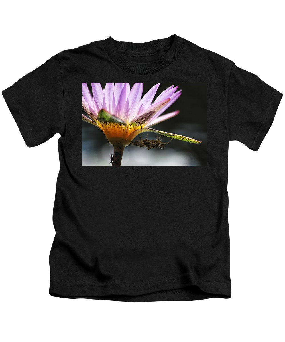 Lilly Kids T-Shirt featuring the photograph Lilly Visitor by Lauri Novak