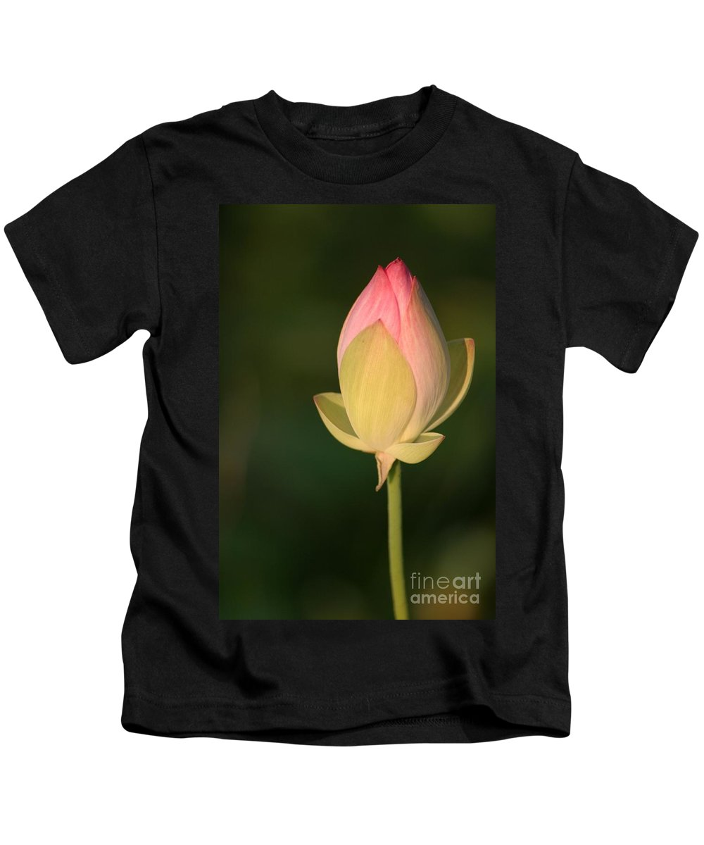 Lotus Kids T-Shirt featuring the photograph Lotus Bud by Living Color Photography Lorraine Lynch