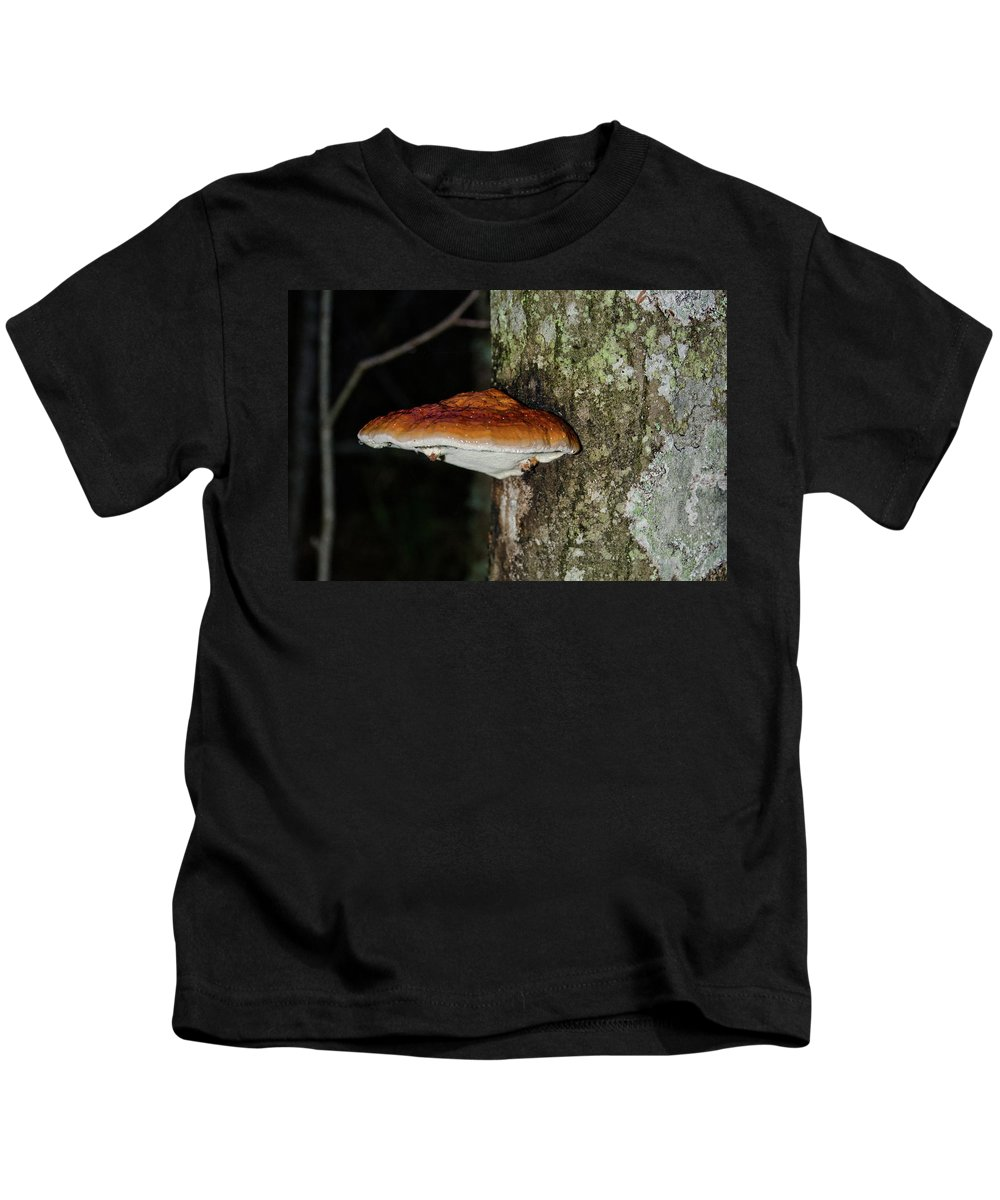 Birch Kids T-Shirt featuring the photograph Mushroom by Michael Goyberg