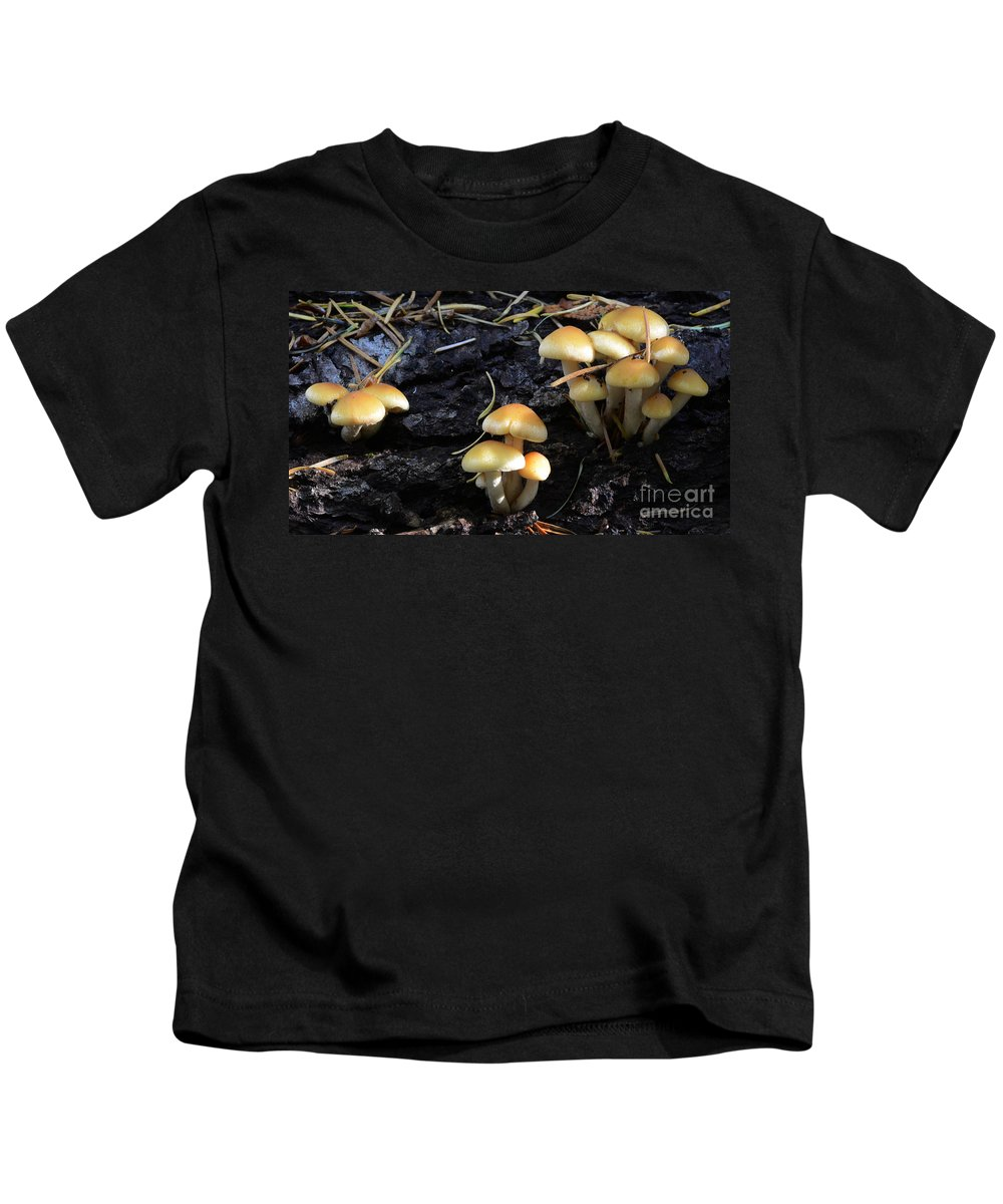 Mushrooms Kids T-Shirt featuring the photograph Mushrooms 5 by Bob Christopher