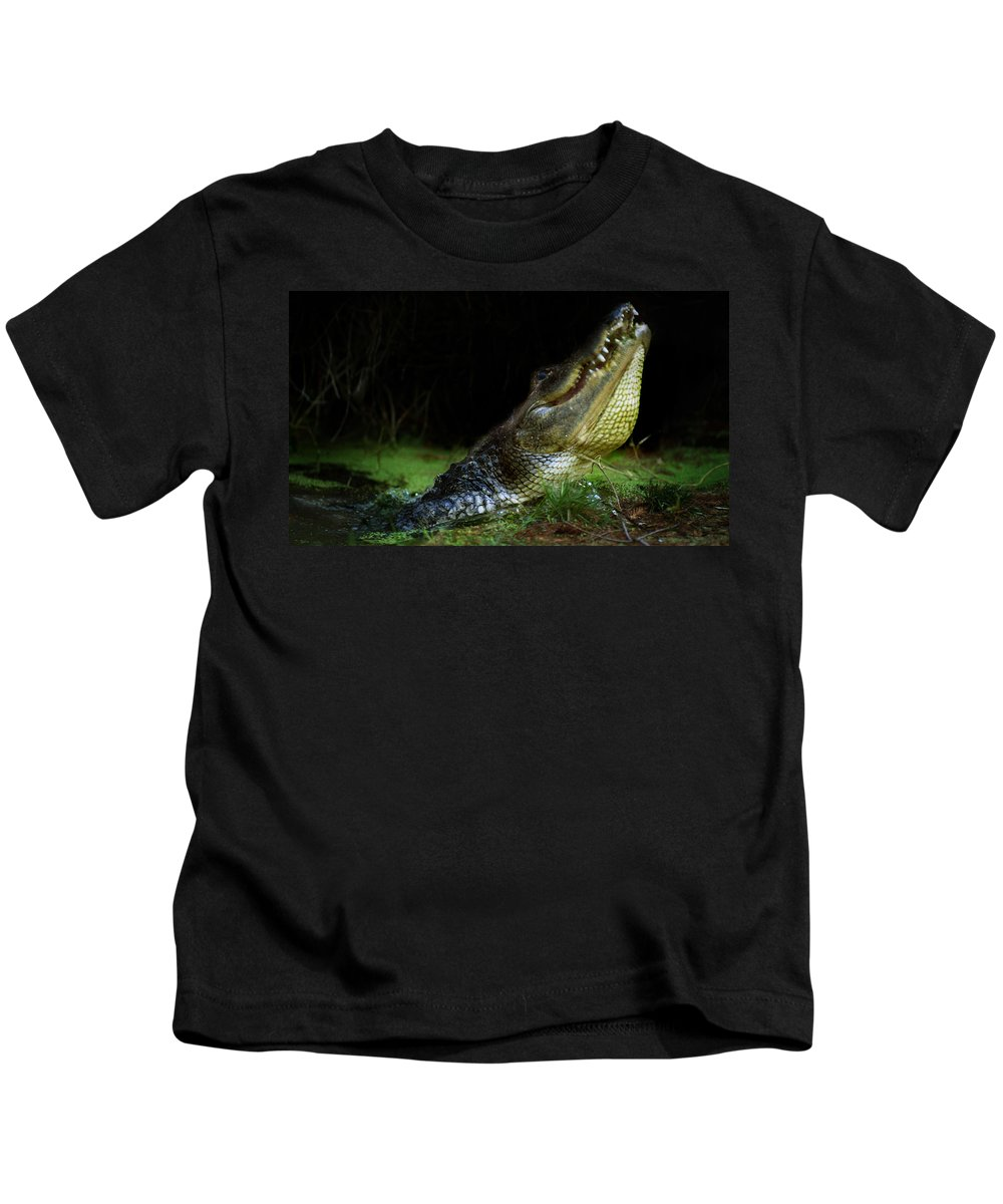 Gator Kids T-Shirt featuring the photograph My Swamp by Skip Willits