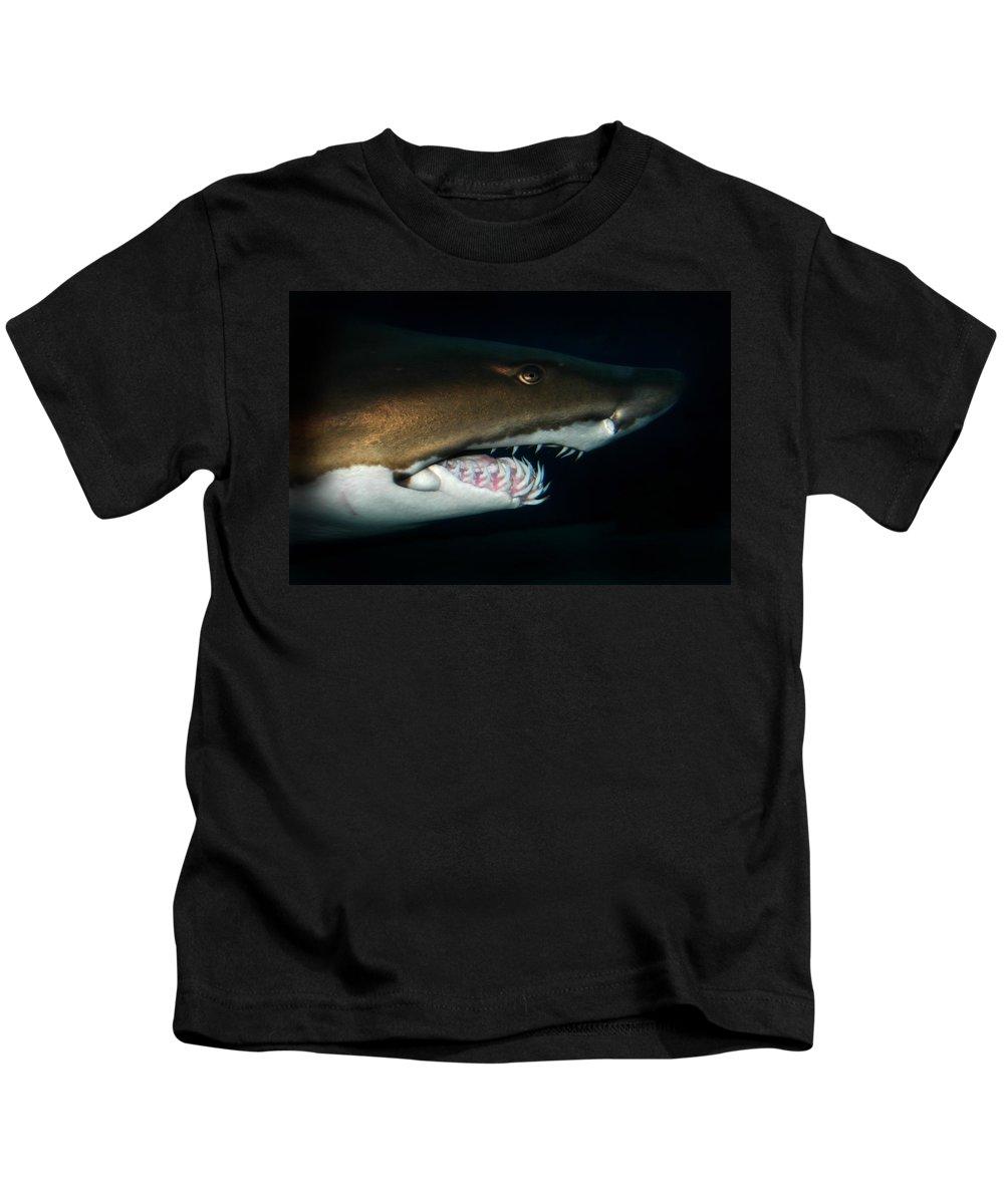 Nurse Shark Kids T-Shirt featuring the photograph Nurse Shark by Anthony Jones