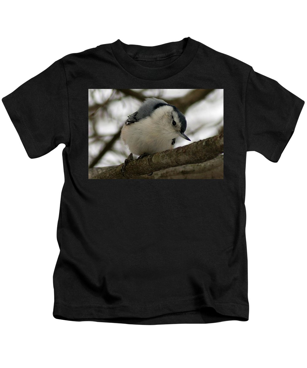 Nuthatch Kids T-Shirt featuring the photograph Nuthatch I by Joe Faherty