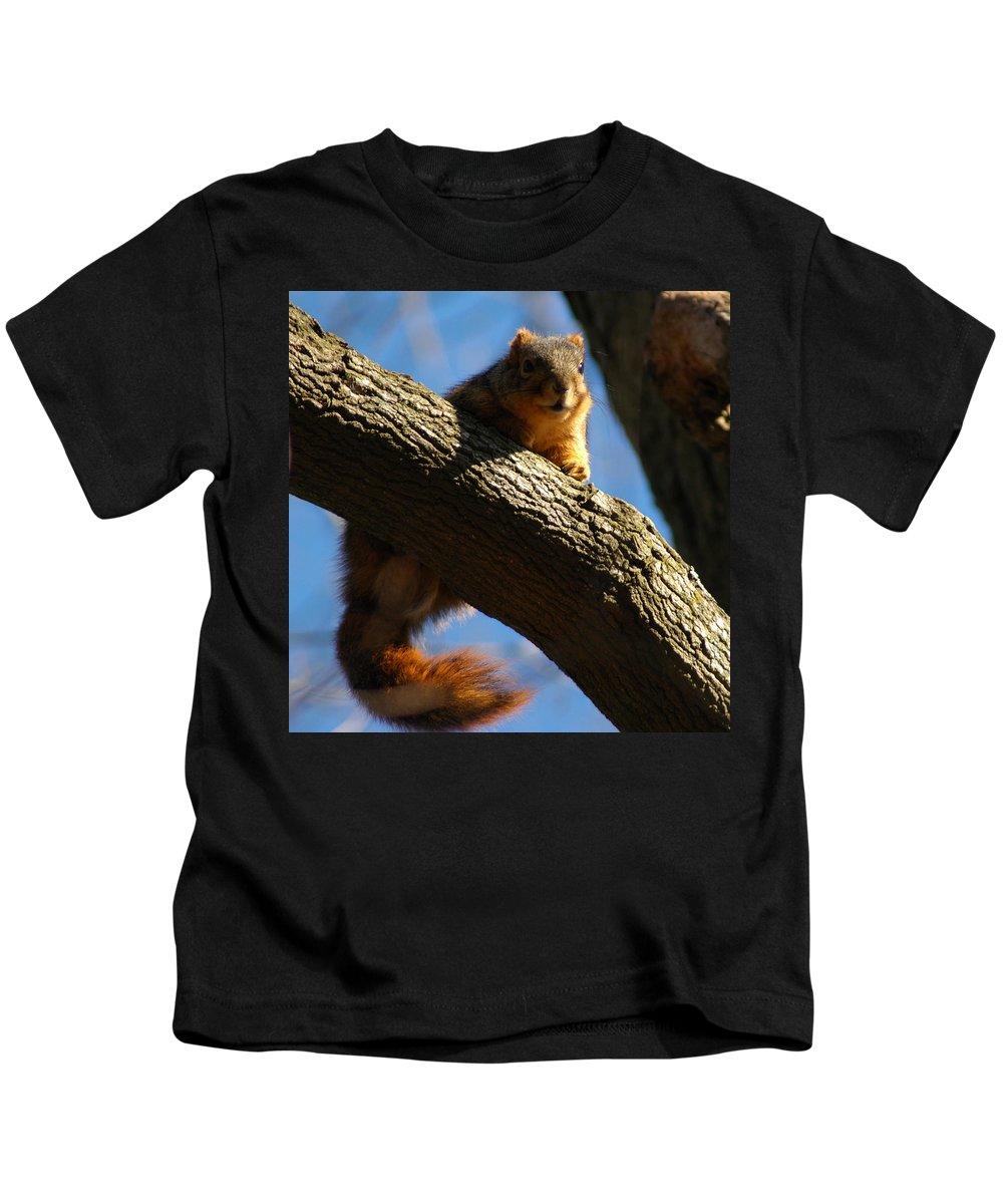 Squirrel Kids T-Shirt featuring the photograph Nuts by LeeAnn McLaneGoetz McLaneGoetzStudioLLCcom