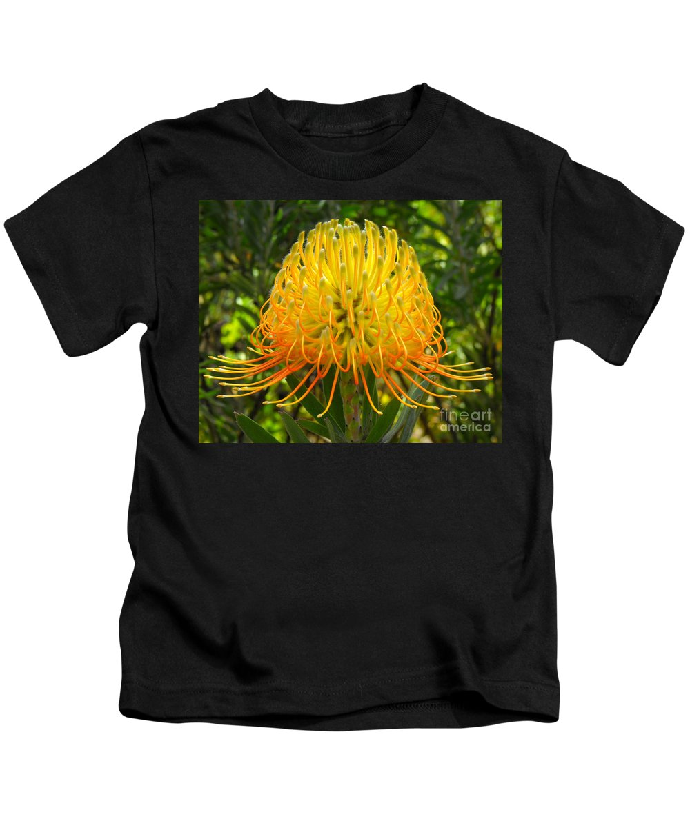 Flower Kids T-Shirt featuring the photograph Orange Protea Flower Art by Rebecca Margraf