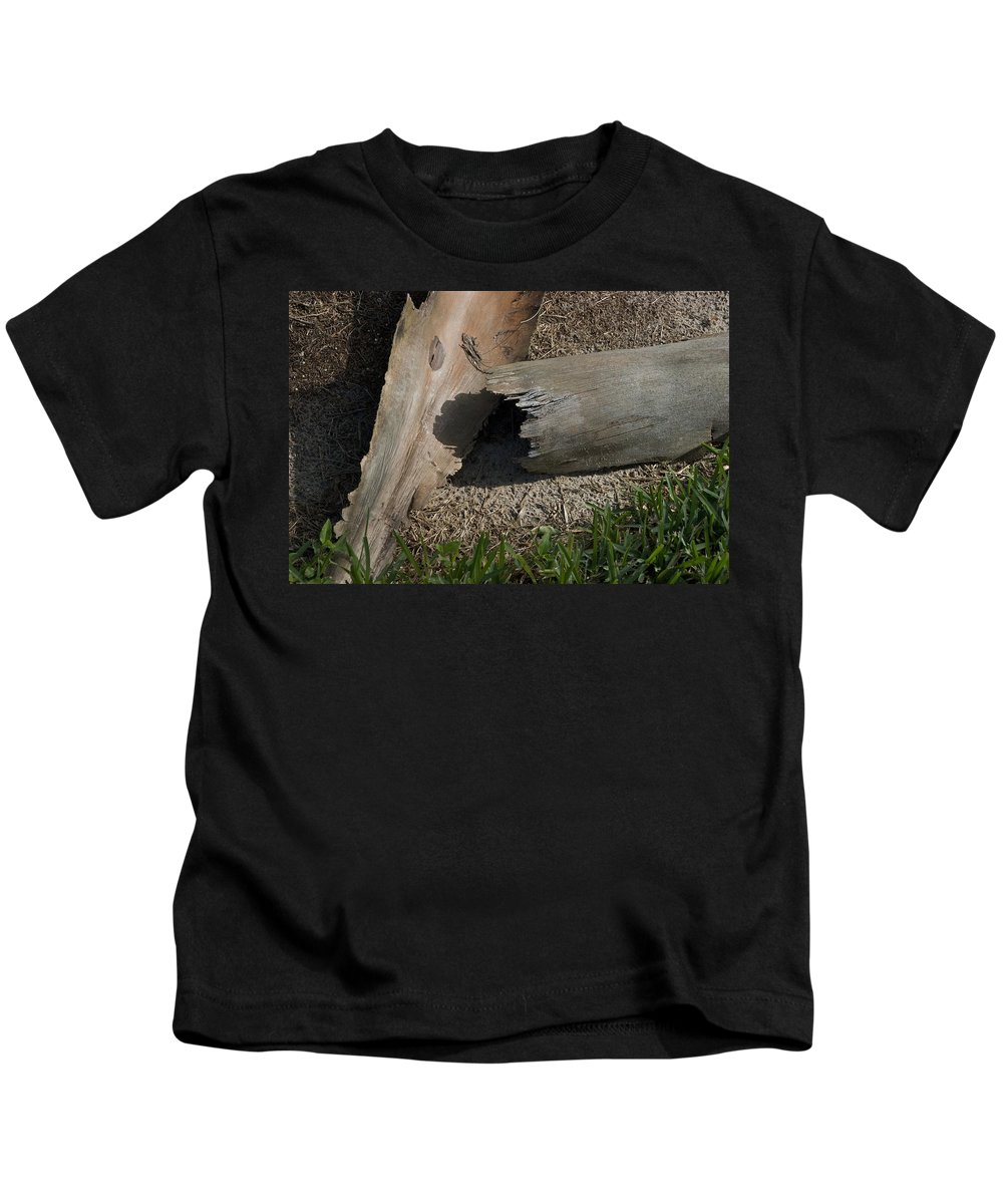 Ave Maria Kids T-Shirt featuring the photograph Palm by Joseph Yarbrough