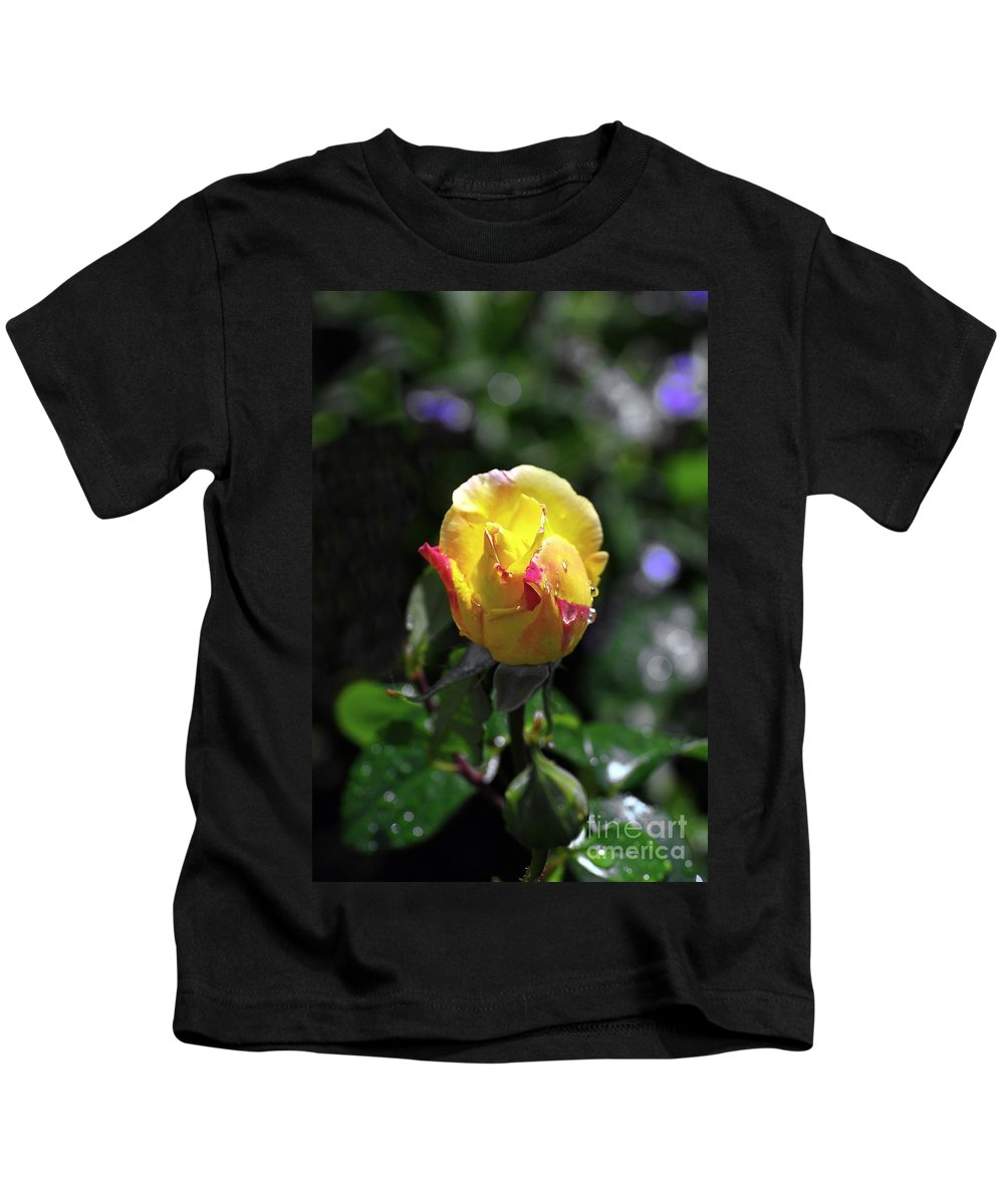 Peace Rose Kids T-Shirt featuring the photograph Peace Rose by John Chatterley