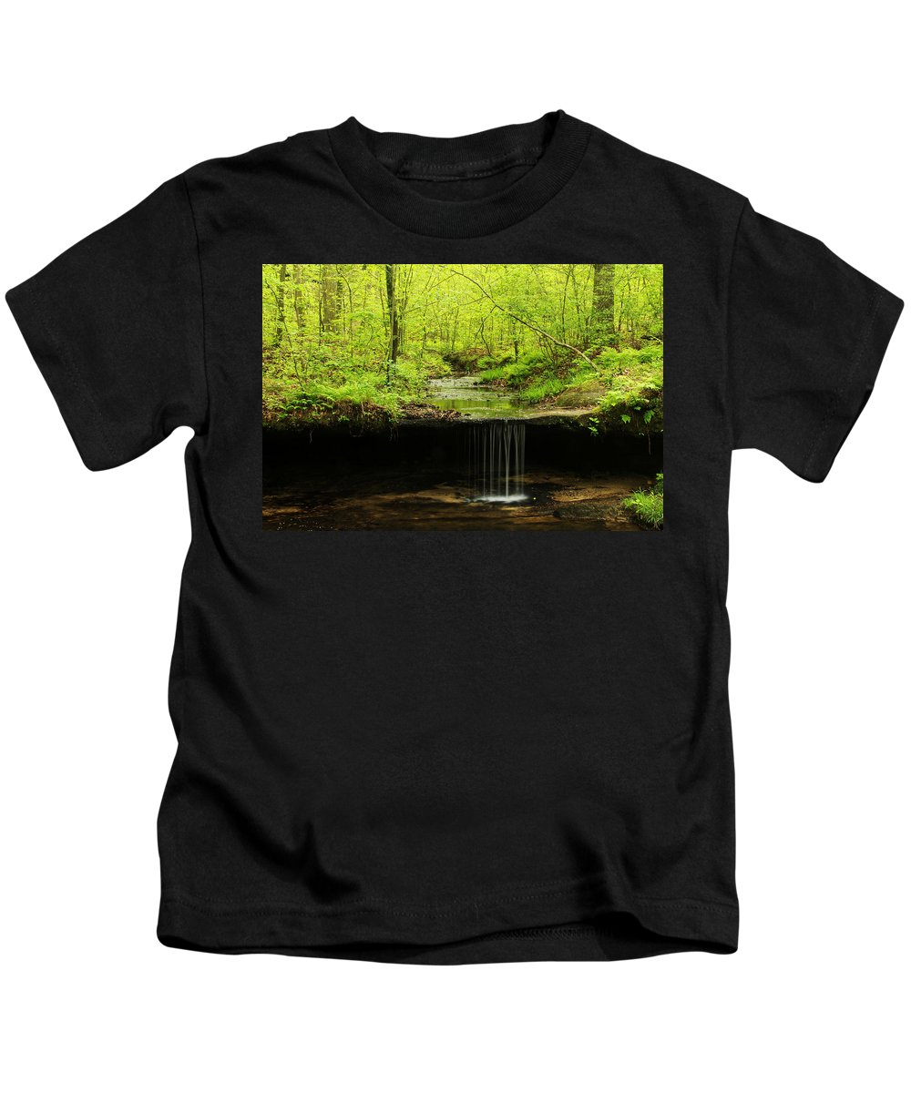Pickle Spring Kids T-Shirt featuring the photograph Pickle Spring In Missouri by Greg Matchick
