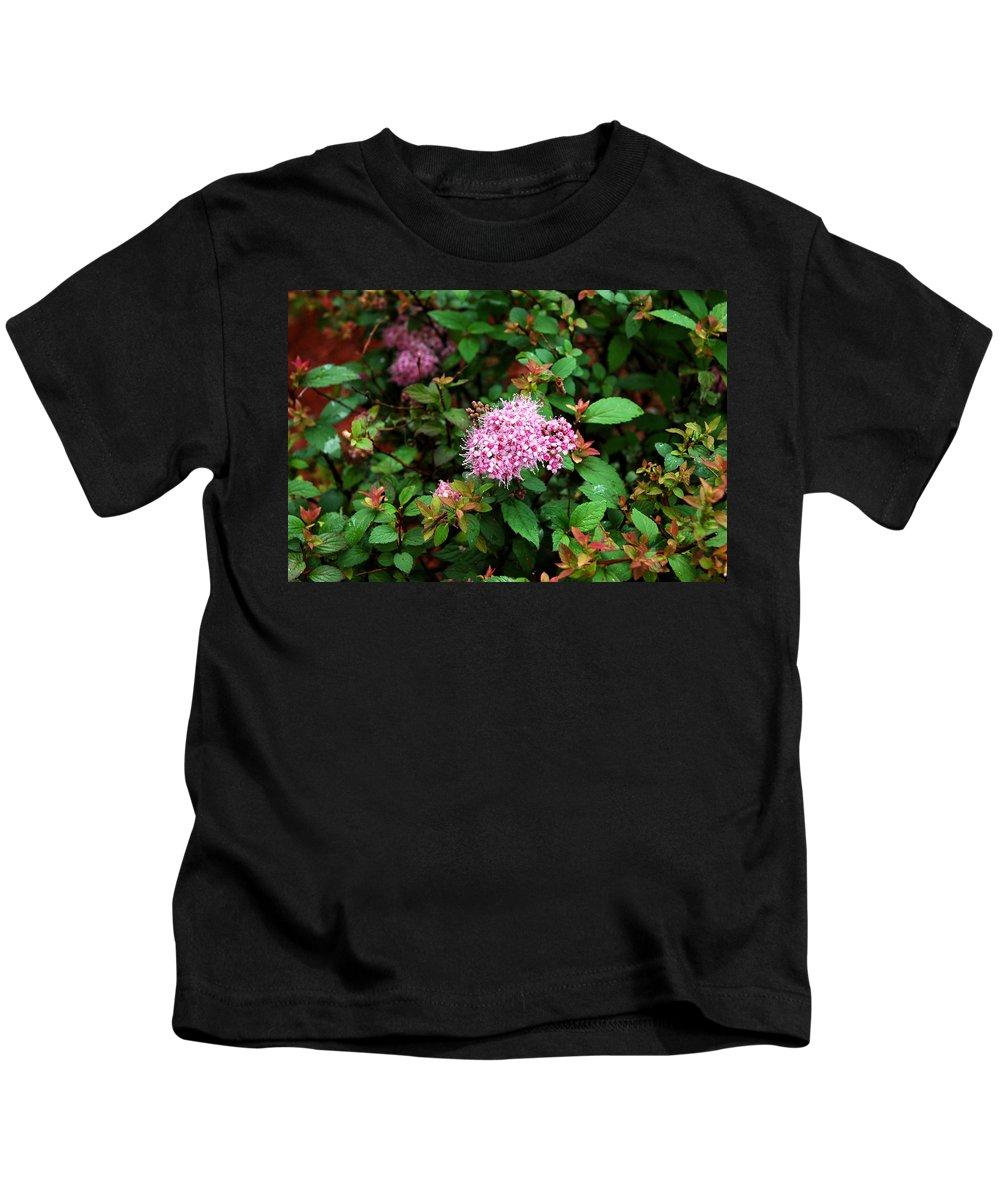 Usa Kids T-Shirt featuring the photograph Pink Flowers Of Little Bavaria by LeeAnn McLaneGoetz McLaneGoetzStudioLLCcom
